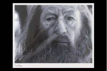 Lord of the Rings - Gandalf  (drawing) 310 x 380mm