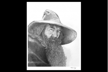 Lord of the Rings - Gandalf 430 x 370mm